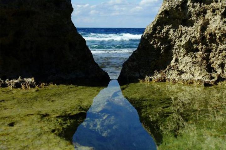 Tide Pooling